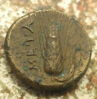 VF  FOR TYPE  LUCANIA METAPONTION CIRCA 300 250 BC. WREATHED