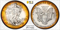 1993 AMERICAN SILVER EAGLE ASE PCGS MINT STATE 67 -  WILD TARGET PCI RAINBOW TONING