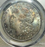1891 MORGAN SILVER DOLLAR PCGS MINT STATE 63 - INCREDIBLE TONE/COLOR