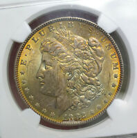 1882 MORGAN SILVER DOLLAR NGC MINT STATE 63 234004 - LY TONED