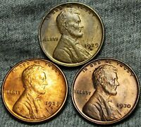 1929-S 1929-D 1930 LINCOLN WHEAT CENTS --- GEM BU CONDITION LOT --- W509