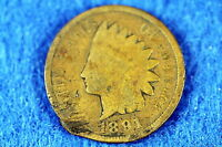 ESTATE  FIND  1891  -  INDIAN HEAD CENT F8156