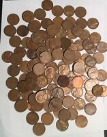LOT 125- P-D-S 1951  LINCOLN COPPER WHEAT PENNIES FROM  ESTATE  US COINS