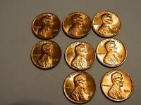 1981 LINCOLN CENT  1 FROM THIS LOT     LOT 2926