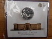 100 POUND UK 2015 SILVER COIN BUCKINGHAM PALACE LIMITED EDIT