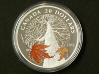 2013 CANADA $20 CANADIAN MAPLE CANOPY AUTUMN SILVER NO TAX 1613