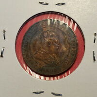 NICE CANADIAN LARGE CENT 1904   BROWN WITH RED/PURPLE TONING