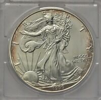 1999 AMERICAN SILVER EAGLE SOME TONING  - IN PLASTIC HOLDER