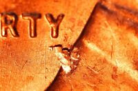 1959 P LINCOLN MEMORIAL CENT   BU   RETAINED LAMINATION OBVERSE