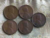 LOT OF FIVE LINCOLN CENT'S 1913-P,1919-P,1920-S,1920-D,1923-P