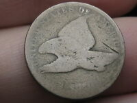 1858 FLYING EAGLE PENNY CENT- SMALL LETTERS