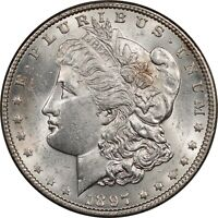 1897 MORGAN DOLLAR - VAM-6A PITTED REVERSE -  UNCIRCULATED