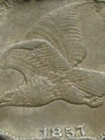 1857 FLYING EAGLE PENNY CENT- EXTRA FINE  FEATHER DETAILS