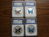 LOT OF 4 SILVER CLAD CHEN BAOCAI BUTTERFLY WORLD WILDLIFE SERIESOBO