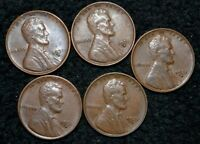 1931-D LINCOLN CENT  EXTRA FINE  CHOICE BROWN