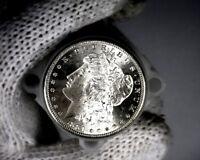 1881 S BLAST WHITE UNC MORGAN SILVER DOLLAR FROM A FRESH ROLL WILL GRADE OUT