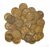 LOT OF 35 1931 P 1C LINCOLN WHEAT CENT PENNIES VF  FINE / VF 128164