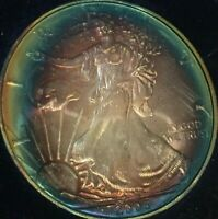 NATURALLY TONED 2005 AMERICAN SILVER EAGLE