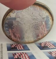 PROOF LIKE 1885 P PL MORGAN SILVER DOLLAR BU MS LUSTER   MIRRORS