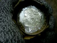 1881-P BLAST WHITE UNC MORGAN SILVER DOLLAR FROM A FRESH ROLL WILL GRADE OUT