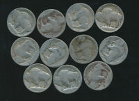 BUFFALO & INDIAN NICKEL - TYPE 1 HIGH GROUND 1913 P-D-S LOW GRADES 11 COINS