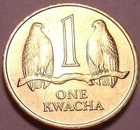 GEM UNC ZAMBIA 1992 1 KWACHA TWO FALCONS ON A BRANCH SEE R AFRICAN COINS FREE SH