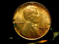 1939 S WHEAT PENNYMS BEAUTY24