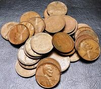 LOT OF 35X 1955 D LINCOLN CENTS / WHEAT PENNIES   GREAT VALUE