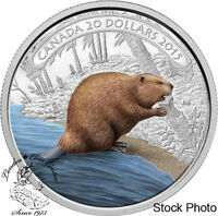 CANADA 2015 $20 BEAVER AT WORK COLOURED SILVER COIN