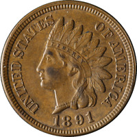 1891 INDIAN CENT GREAT DEALS FROM THE TECC BARGAIN BIN