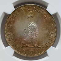 NGC-MINT STATE 61 1889 PARAGUAY PESO SILVER UNC  TONING