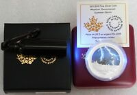 2015 CANADA WEATHER SUMMER STORM $20 SILVER PROOF 1OZ COIN B