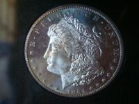 1884-CC GSA MORGAN SILVER DOLLAR NGC  MINT STATE 63 PL / PROOF LIKE WITH BOX AND COA