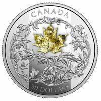 2 OZ. PURE SILVER COIN   CANADA: GOLDEN MAPLE LEAF 2018 30 D