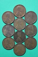 LOT OF 10 1909 P PLAIN LINCOLN WHEAT CENTS EXACT COINS FLAT RATE SHIPPING OCE336