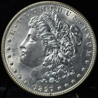1897 MORGAN SILVER DOLLAR - TOP 100 VAM 6A PITTED REVERSE
