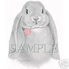 Big Lop Rabbit with Clover   Tshirt    Sizes/Colors