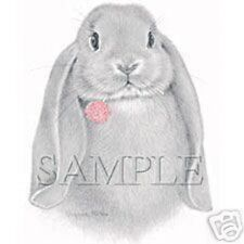 Big Lop Rabbit with Clover  Sweatshirt   Sizes/Colors