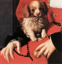 Photo/Poster - Portrait Of A Lady With A Puppy (Detail) - Agnolo Bronzino 1503 1