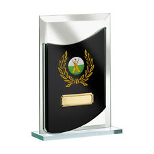 Glass Award Multi sport Basketball, canoeing, golf, pool, snooker FREE Engraving