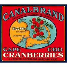 NEW Vintage Canal Brand Cape Cod Cranberries Crate Label Poster Decor Wall Art