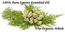 CYPRESS Essential Oil *Buy 3 Get 1 FREE* Pure Certified Aromatherapist on Staff