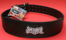 NEW Schiek Jay Cutler J2014 Leather Padded Back Weight Lifting Belt OLD LOGO