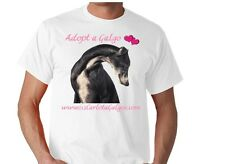 Help the Galgos (Spanish Greyhounds) at 112 Carlota Galgos by buying a T-Shirt
