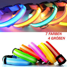 Dog collar LED light in 7 colors , colored by Band Rechargeable USB