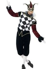 Adult Gothic Venetian Harlequin Jester Mens Halloween Fancy Dress Costume Outfit