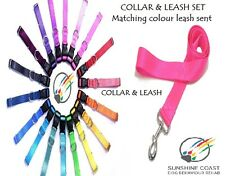 DOG COLLAR & LEASH / LEAD SET DOUBLE LOCK SOFT STRONG X SMALL X LARGE 20 COLOURS