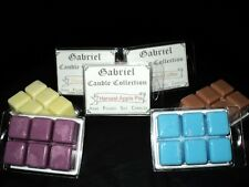 2 - 3 ounce Highly Scented tart pack-wax melts-melters-bar! Fall/Winter Scents!!