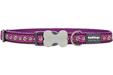 Red Dingo Daisy Chain Purple Dog Collar - Choice of Sizes