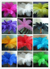 Wholesale 10-100pcs High Quality Natural OSTRICH FEATHERS 6-8'inch/15-20cm